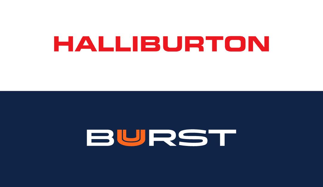 Verifying Snapshots on SoftNAS for Compliance for Halliburton